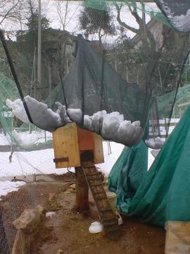 il recinto di Castorina con la neve ammassata sulla rete protettiva, il peso ha lacerato le reti e piegato uno dei pali